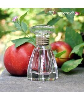 LANVIN MODERN PRINCESSE парфюмированная вода 30 мл для женщин